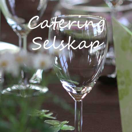 Selskap Catering